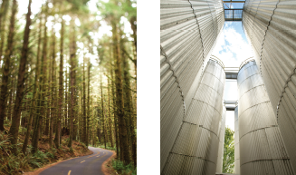 Trees and Silos